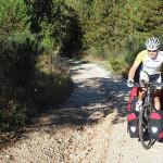 steile Forststraße am Weg nach Barisciano