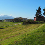 Blick zurück zum Monte Nerone - am Weg von Urbania nach Urbino