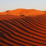radreise oman: morgenstimmung - blick aus dem zelt