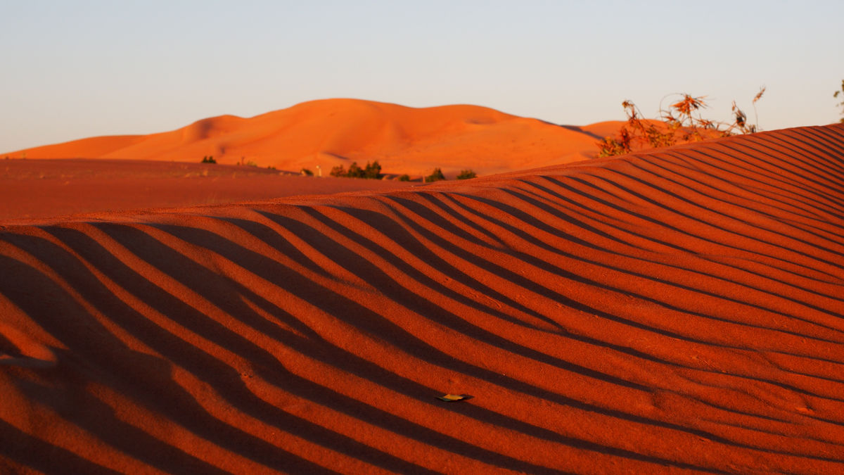 Blick aus dem Zelt: Morgenstimmung über der Wüste