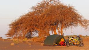 sehr idyllischer Zeltplatz zwischen Wüste und Hadschar-Gebirge