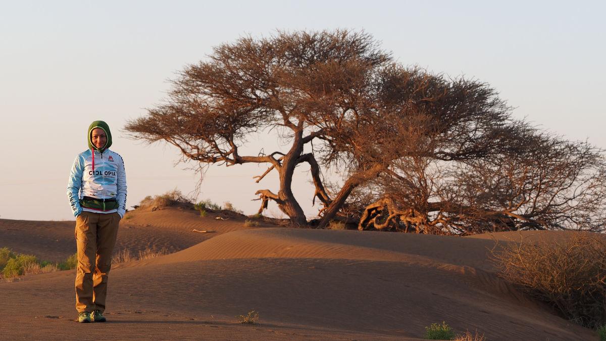 Morgenstimmung zwischen Wüste und Hadschar-Gebirge