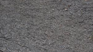wie Holzspäne aussehenden Felsnadeln