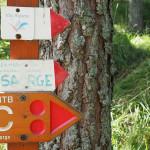 Abfahrt vom Passo Muratone (1.158m) – Via Alpina ins Vallon de la Béndola
