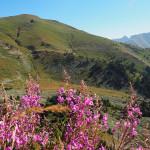 unterwegs Richtung Colle di Tenda (1.871m)