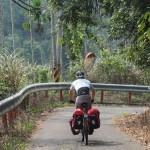 am Weg nach Zhudong