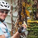 Stärkung unterwegs: reife Babybananen