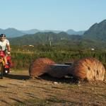 prächtige Morgenstimmung am Weg nach Taitung