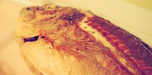 Konoba Jure (Rovinj): gegrillter Fisch