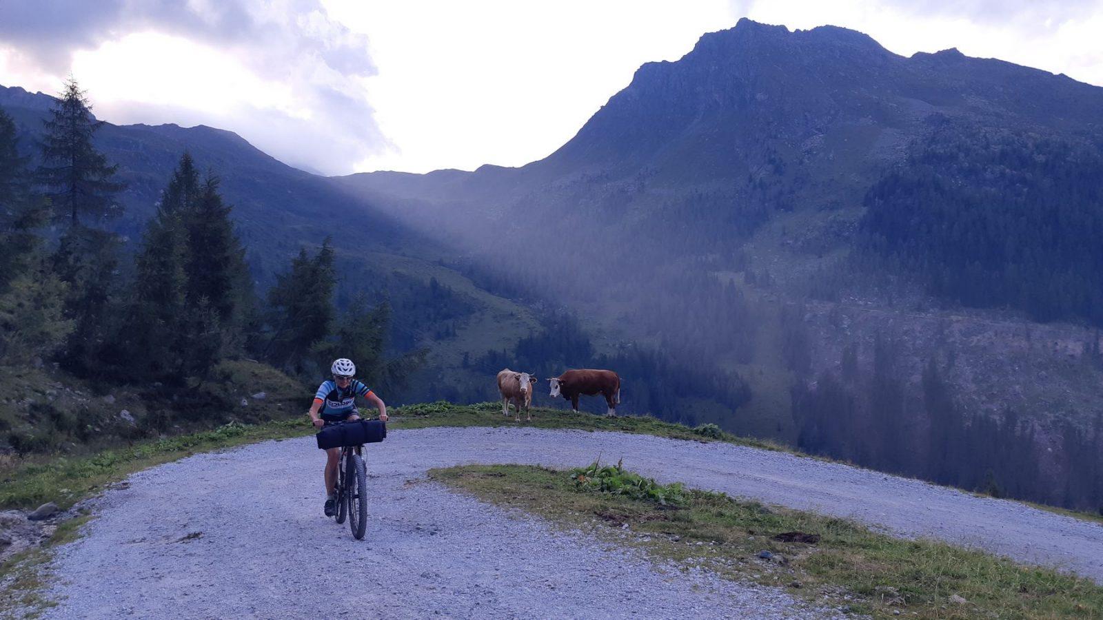 Bikepacking Karnische Alpen - Auffahrt Porzehütte